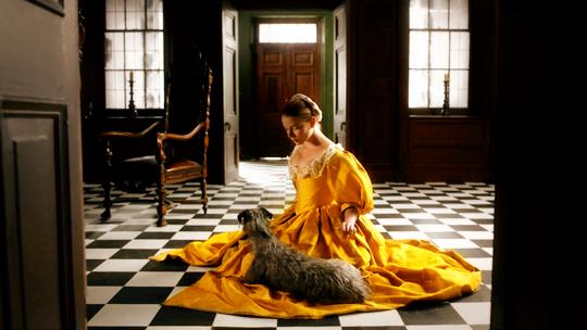 La serie tiene una clara influencia de la pintura flamenca de Vermeer